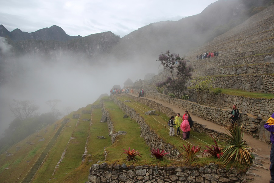 der vilcabamba trek teil 2 machu picchu und cuzco der lumulu reise blog. Black Bedroom Furniture Sets. Home Design Ideas