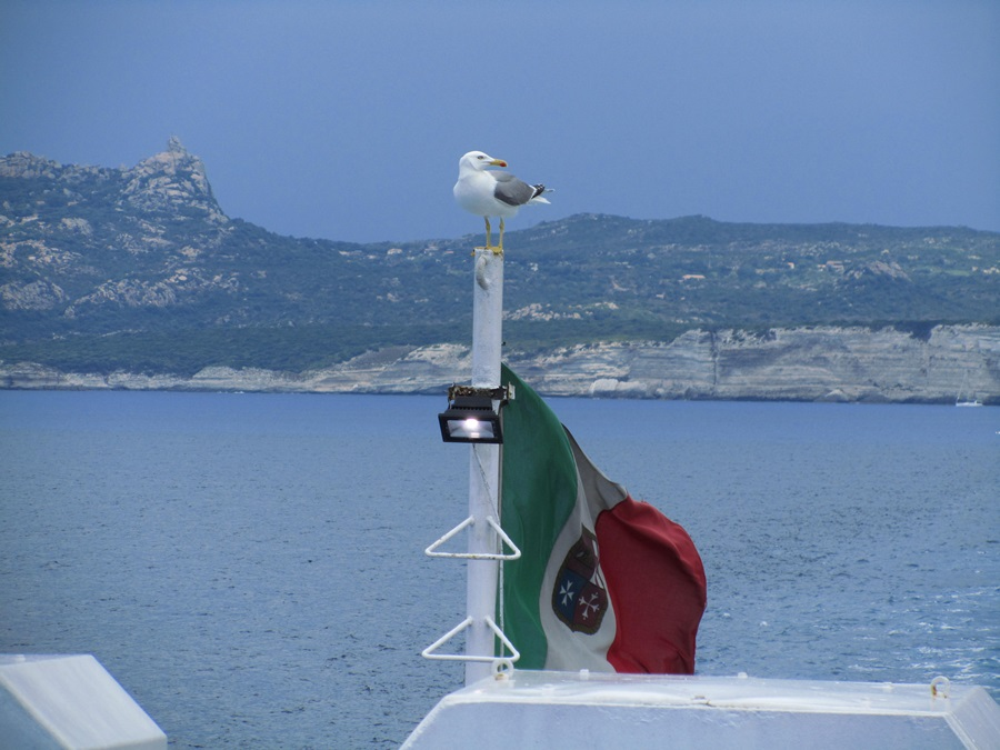 T2a001a.Korsika,Bonifacio-Sardinien,Santa Teresa.IMG_0030 (47)
