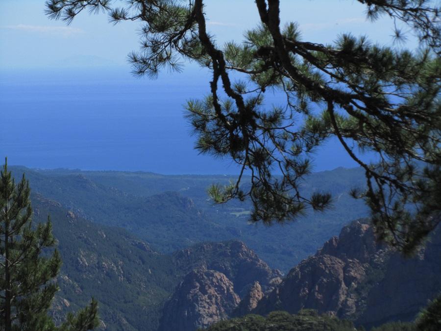 T2a011a.Col de Bavella Pass 1218 m hoch bei Solenzara.IMG_0106 (21)