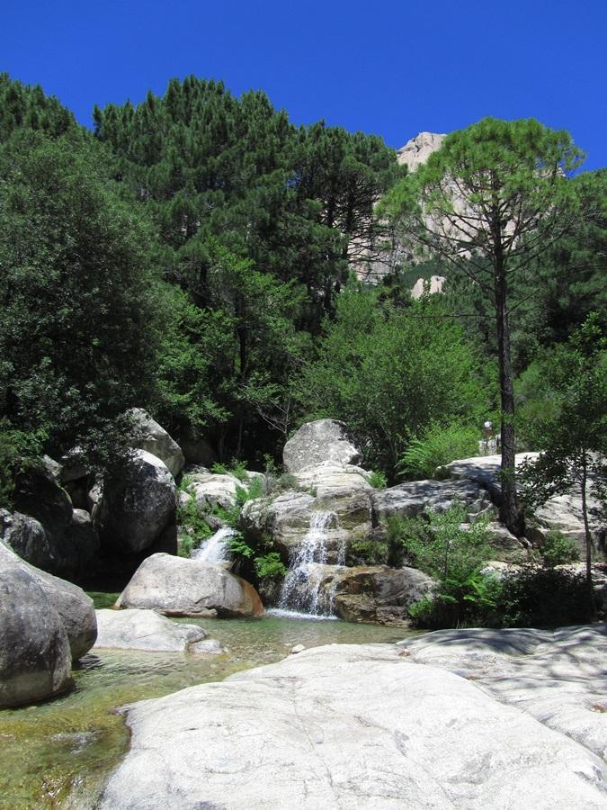 T2a011a.Col de Bavella Pass 1218 m hoch bei Solenzara.IMG_0106 (47)
