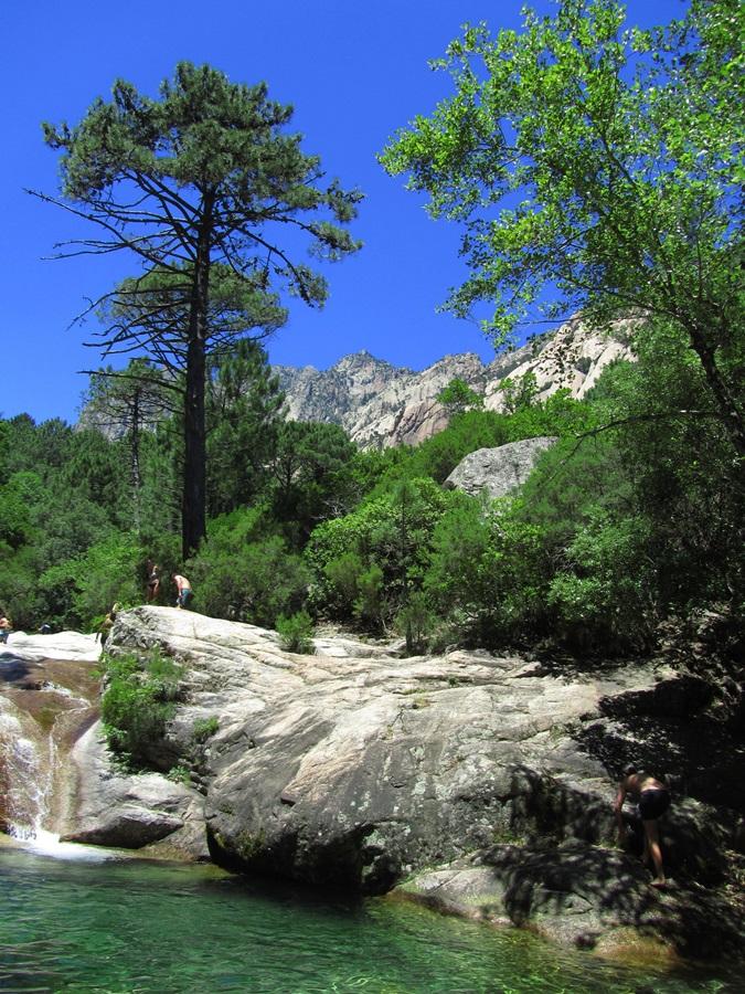 T2a011a.Col de Bavella Pass 1218 m hoch bei Solenzara.IMG_0106 (60)