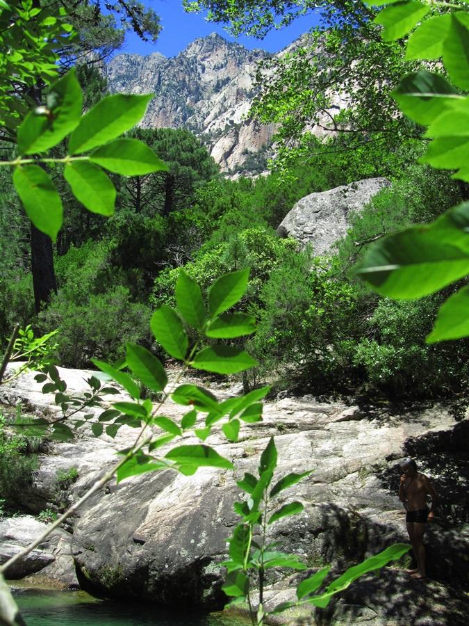 T2a011a.Col de Bavella Pass 1218 m hoch bei Solenzara.IMG_0106 (64)