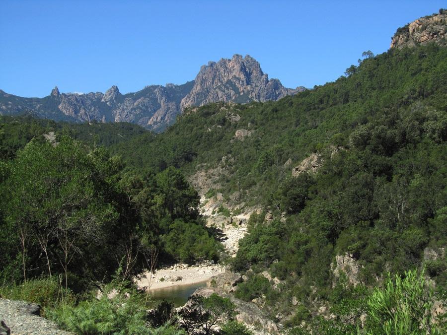 T2a011a.Col de Bavella Pass 1218 m hoch bei Solenzara.IMG_0106 (7)
