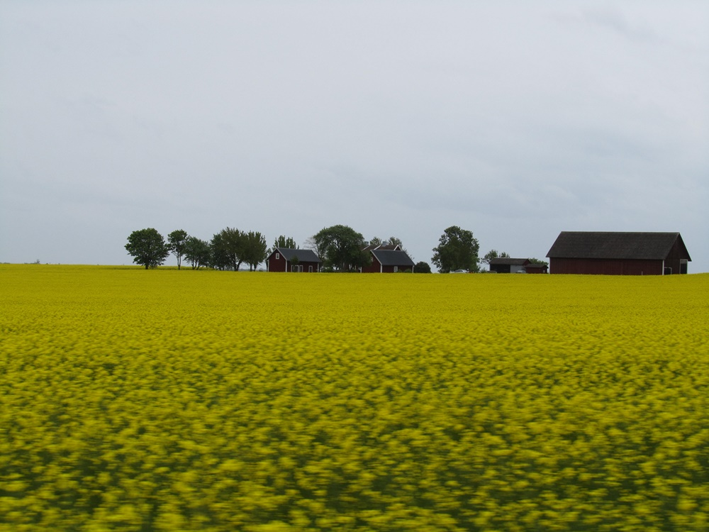 0012a.Unterwegs nach Örebro.IMG_0005 (6)
