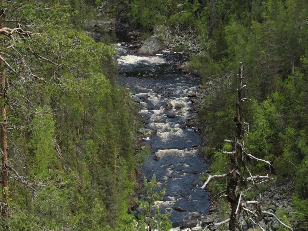0032b.Muddus nationalpark,Wanderung.IMG_0003 (19)
