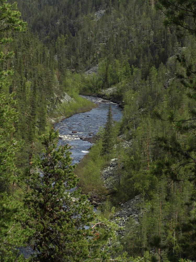 0032b.Muddus nationalpark,Wanderung.IMG_0003 (33)