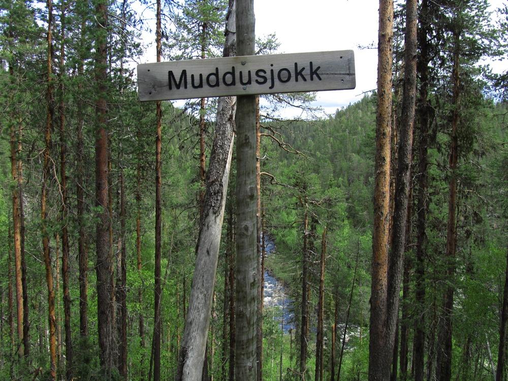 0032b.Muddus nationalpark,Wanderung.IMG_0003 (6)