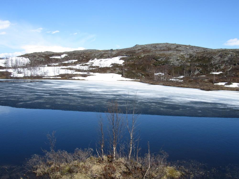 0034.Uw.vom Abisko nationalpark nach Riksgränsen Grenze zu  Norwegen..IMG_0026 (15)