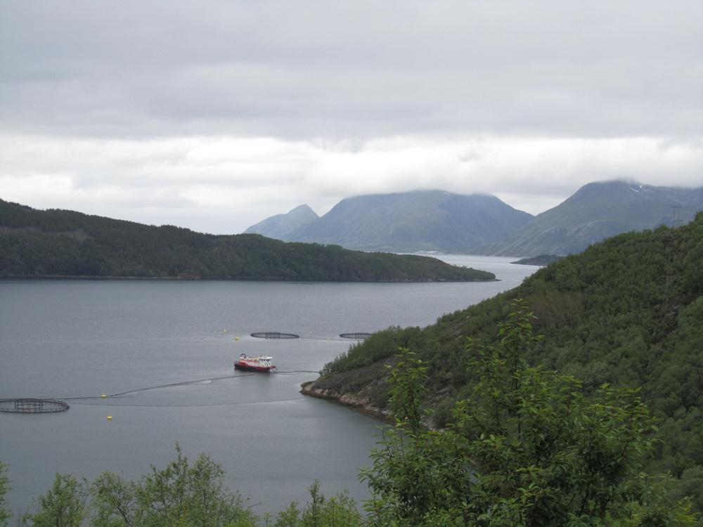 0042.Uw.von Reipa nach Flostrand am Sjona Fjorden, (43).IMG_1192