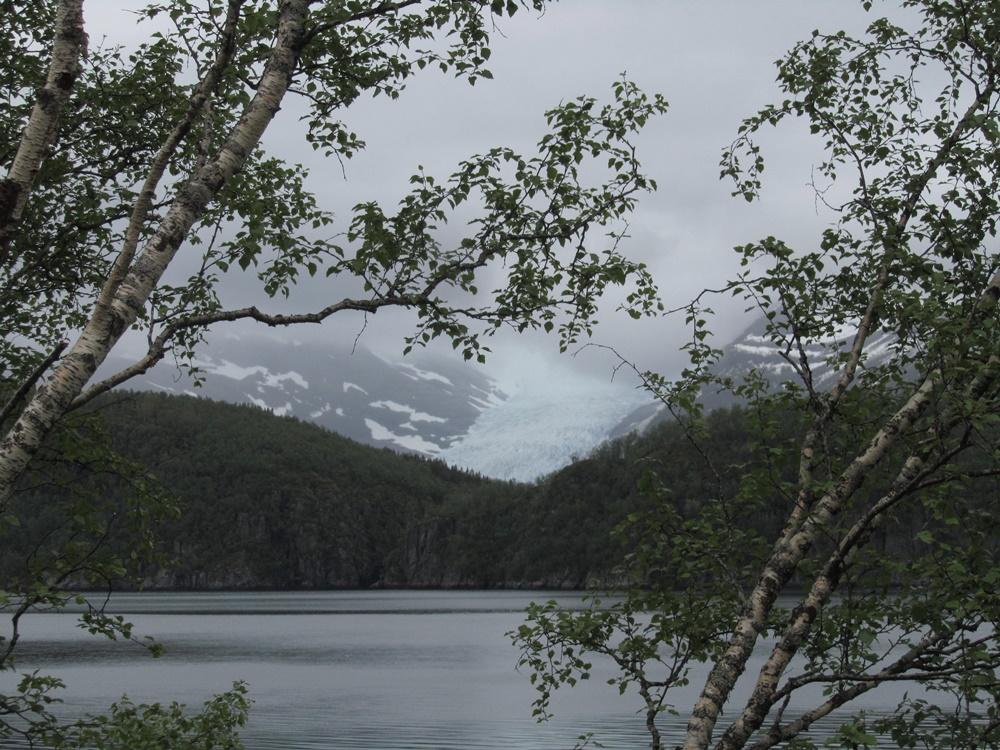 0042a.Svartisen Gletscher vom Nordfjorden aus. (44).IMG_1192
