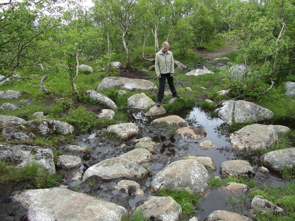 0043c.Wanderung bei Sandnessjoen.Die 7 Schwestern.IMG_0055 (44)