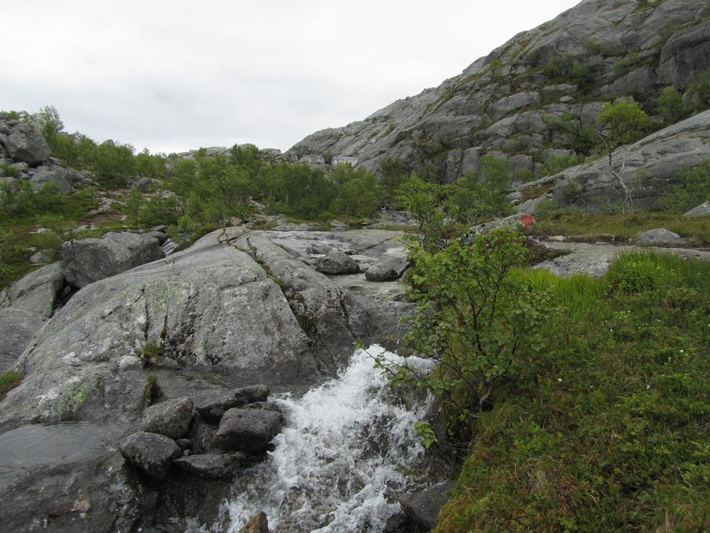 0043c.Wanderung bei Sandnessjoen.Die 7 Schwestern.IMG_0055 (58)