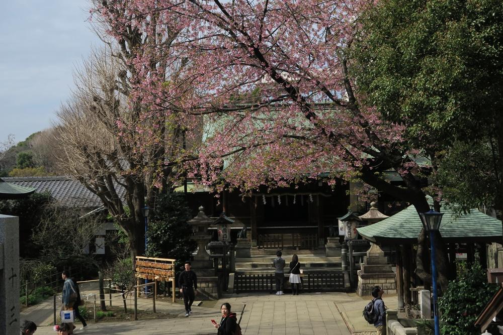 01.J.Tokyo Ueno Park. IMG_3460 (51)
