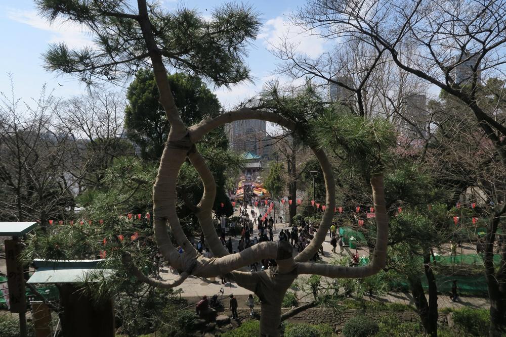 01.J.Tokyo Ueno Park. IMG_3460 (9)