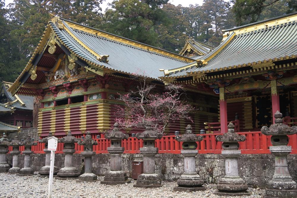 03.J.Nikko-Nationalpark. IMG_3999 (135)
