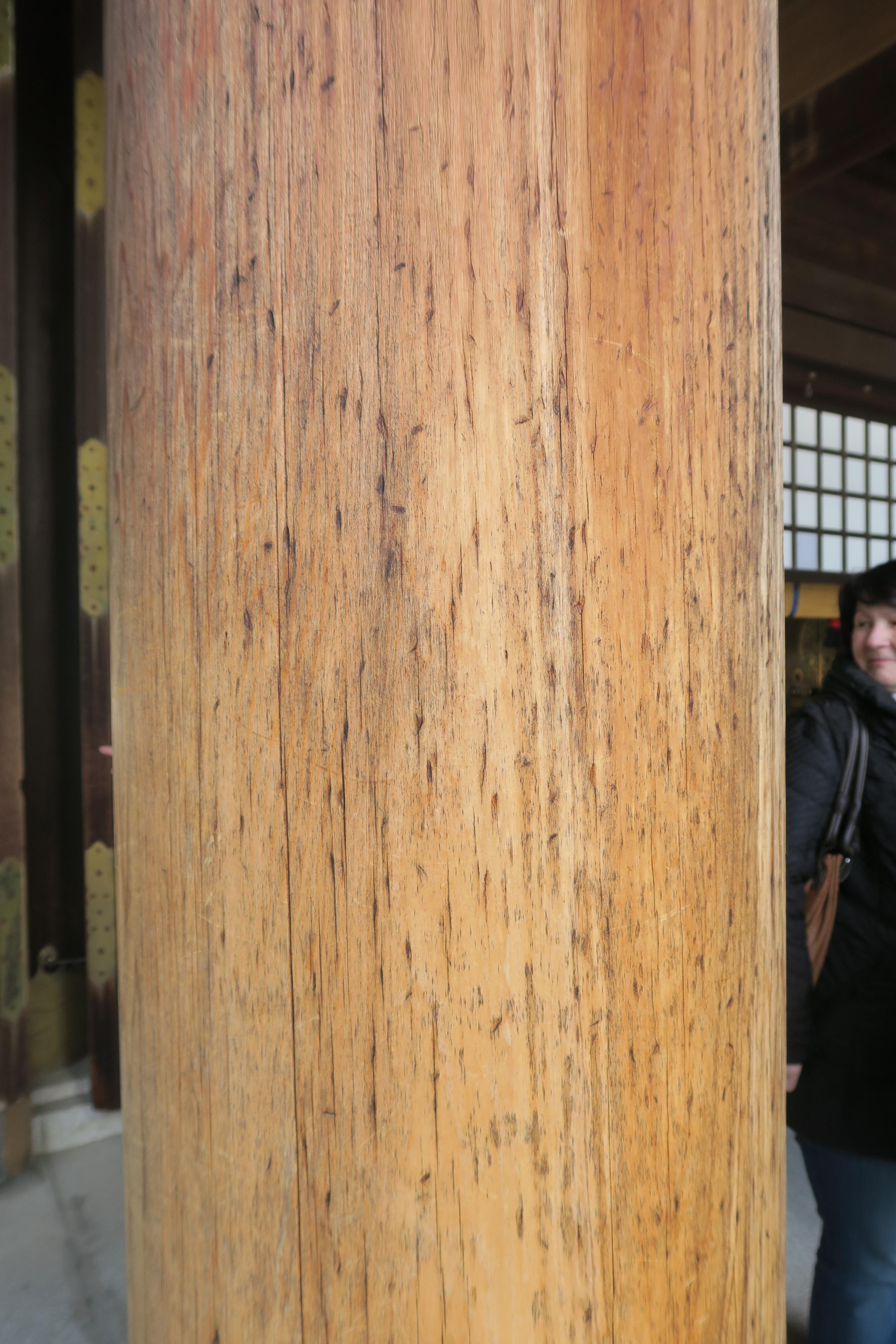 02.J.Tokio 22.03.2016.IMG_3877 (25)
