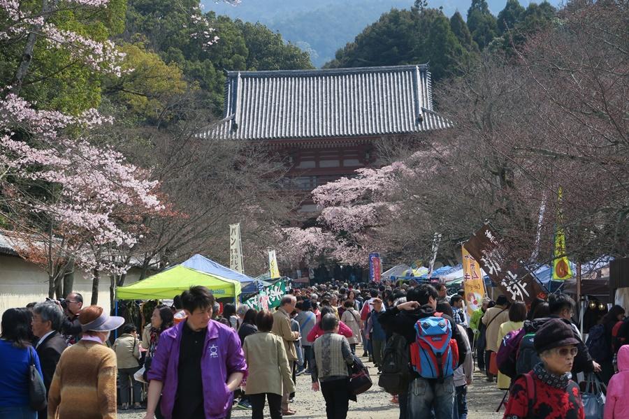 08.J.Kyoto,Daigoji-Tempel.IMG_5205 (4)