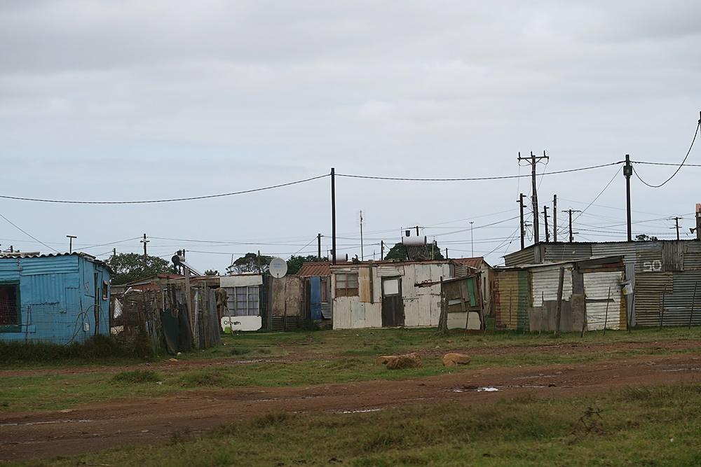 2.Von Cape Francis Bay nach Knaysna IMG_7400 (46)
