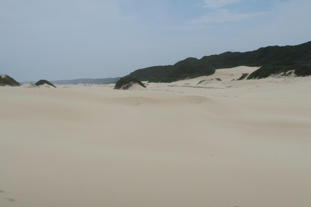 5.Cap St.Francis Bay, 2.Tag mit Wanderung IMG_7355 (34)