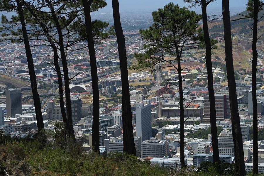 Kapstadt auf dem Signal Mounten IMG_8690 (24)