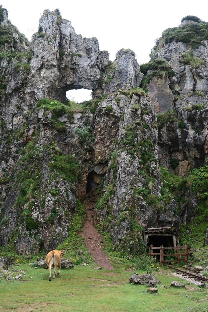 08..21.07.17 Wanderung, Lagos de Covadonga,Minas de Buferrera IMG_1257 (88)