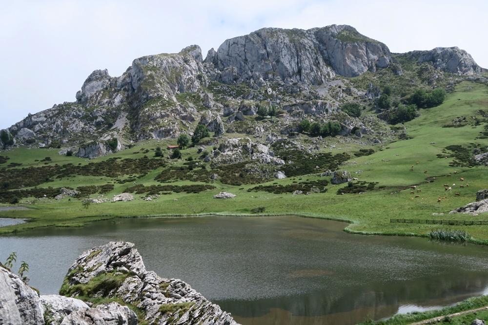 08..21.07.17 Wanderung, Lagos de Covadonga,um den Lago La Ercina 1108 m hoch IMG_1257 (35)