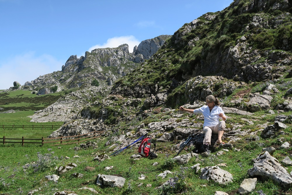 08..21.07.17 Wanderung, Lagos de Covadonga,um den Lago La Ercina 1108 m hoch IMG_1257 (57)