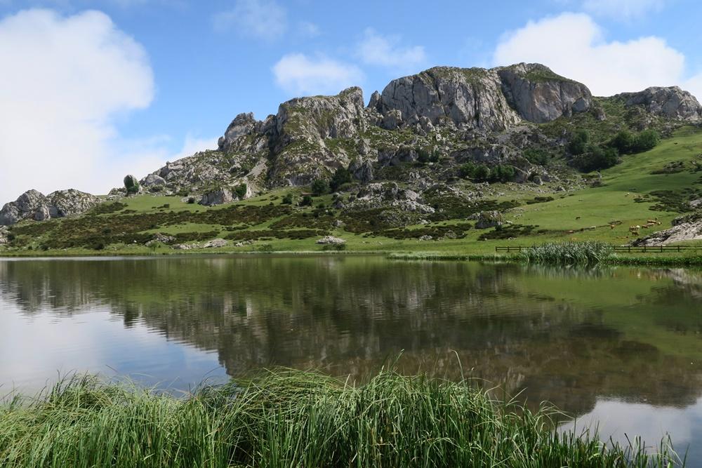 08..21.07.17 Wanderung, Lagos de Covadonga,um den Lago La Ercina 1108 m hoch IMG_1257 (61)