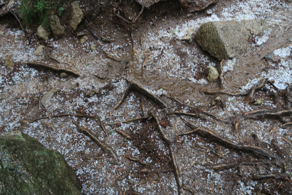 10...10.07.17 Espot im Parc National dÀigüestortes Wanderung im Hagel IMG_0544 (62)