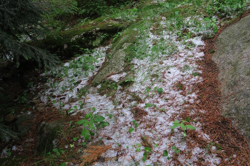 10...10.07.17 Espot im Parc National dÀigüestortes Wanderung im Hagel IMG_0544 (83)