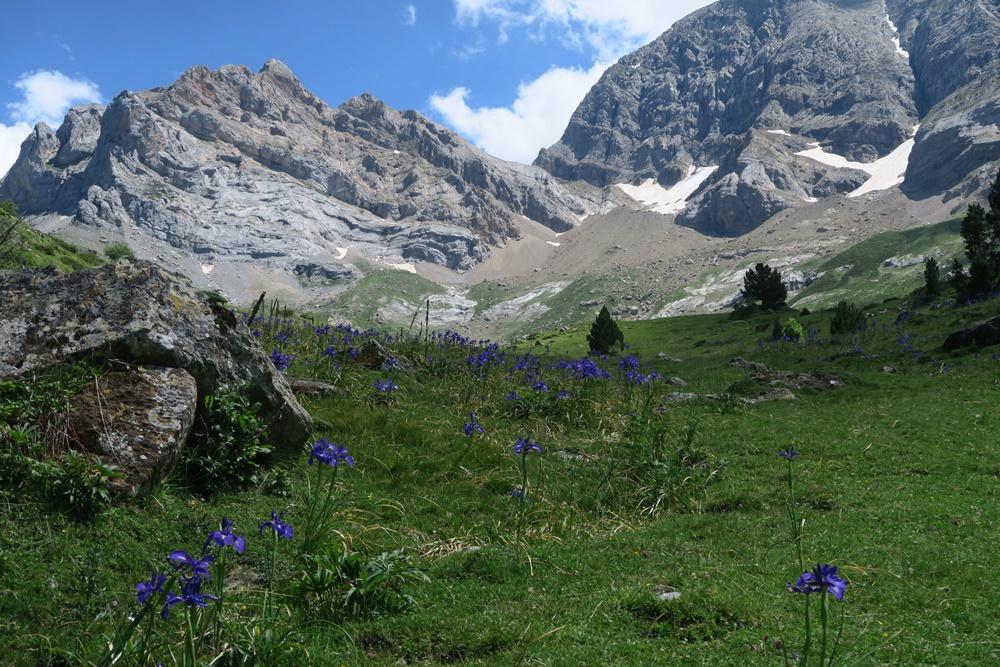 5.. Tour bis Grande Cascade 1789 m u.Chemin des Espugues IMG_0790 (102)